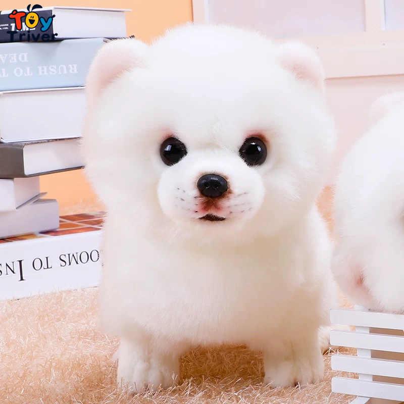 Pomeranian Dog Plush Toy Triver Stuffed Animal Doll Puppy Pet Kids Baby Dog Lover Birthday Gift Home Shop Decoration Craft Aliexpress