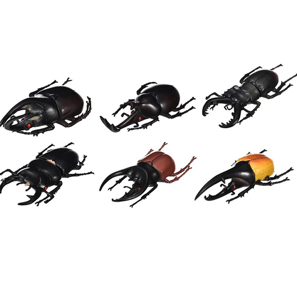 6Pcs Simulation Beetle Insect Model Kids Adult Toy Prank Trick Props New