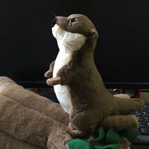 Image 3 - 20 センチメートル実生活ユーラシア川カワウソぬいぐるみリアルな野生動物ぬいぐるみリアルなソフトカワウソ玩具ギフト子供