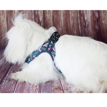 Paddy Pet Harness and Leash Set One Reflective Dog Camouflage Vests for Small/Medium/Large Dogs