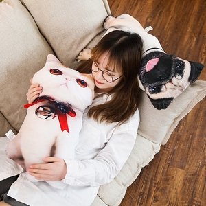 Image 3 - Simulazione Funny Dog & Cat Cuscino Morbido Peluche Animale Del Fumetto Pug & Persiano Gatto di Peluche Bambola Cuscino Pisolino Cuscino Del Bambino regalo di Compleanno del capretto