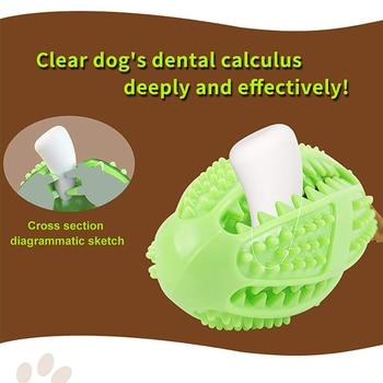 Toothbrush Dispensing Ball 2