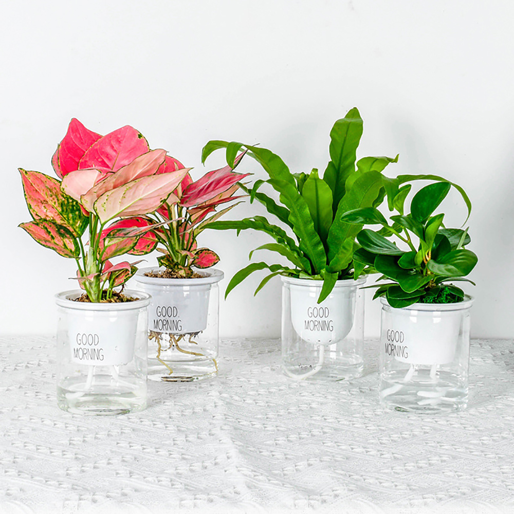Hydroponic Flowerpot  Home Office Desk Flower Pot Green Plants Self-watering System Home Office Desk Decoration