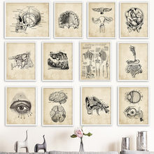 Wall Art Canvas Painting Anatomy Skeleton Nordic Posters And Prints Vintage Wall Pictures For Hospital Doctor Office Decor