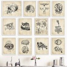 Arte de pared lienzo pintura esqueleto de anatomía carteles nórdicos e impresiones cuadros de pared Vintage para la decoración de la oficina del médico del Hospital