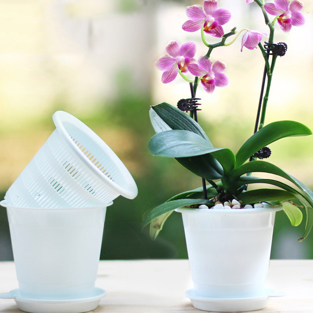 Transparent Orchid Flower Container Pouch Root Plastic Flower Container Nursery Box Home Garden Supplies Wholesale