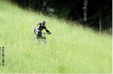 Bicycle Fittings Brake Handle Zb206 Brake Handle Handbrake Bike Handbrake