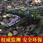 130CM gonflable animal sauvage jumbo crocodile modèle figurines jouets Simulation animal à sang froid décorer collection jouets pour enfants - 4