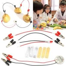 Patates meyve Biologia elektrik üretir bilim deney eğitici oyuncaklar çocuklar çocuklar için okul elektrikli kök kiti