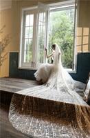 Long Cathedral Women Wedding Veil Bling Bling Sequins Ladies Bridal Veils Korea New Fashion 4M Long Spring
