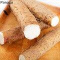 5 шт. Железный Yam общий Yam Ризом общего Yam диоскореа Ризома высокий питательный Овощной для мини-сада
