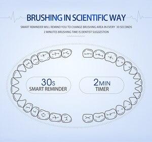 Image 5 - Elektryczna szczoteczka do zębów Sonic końcówki do szczoteczek dla dorosłych z IPX7 wodoodporny bezprzewodowy akumulator i 30 dni za pomocą czasu 6 Level chemiczna