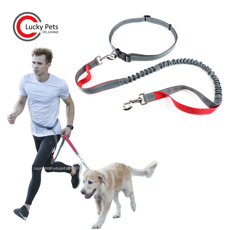 Pet Supplies Nylon Reflective Pet Running Hand Holding Rope Sports Hands-Free Dog Hand Holding Rope
