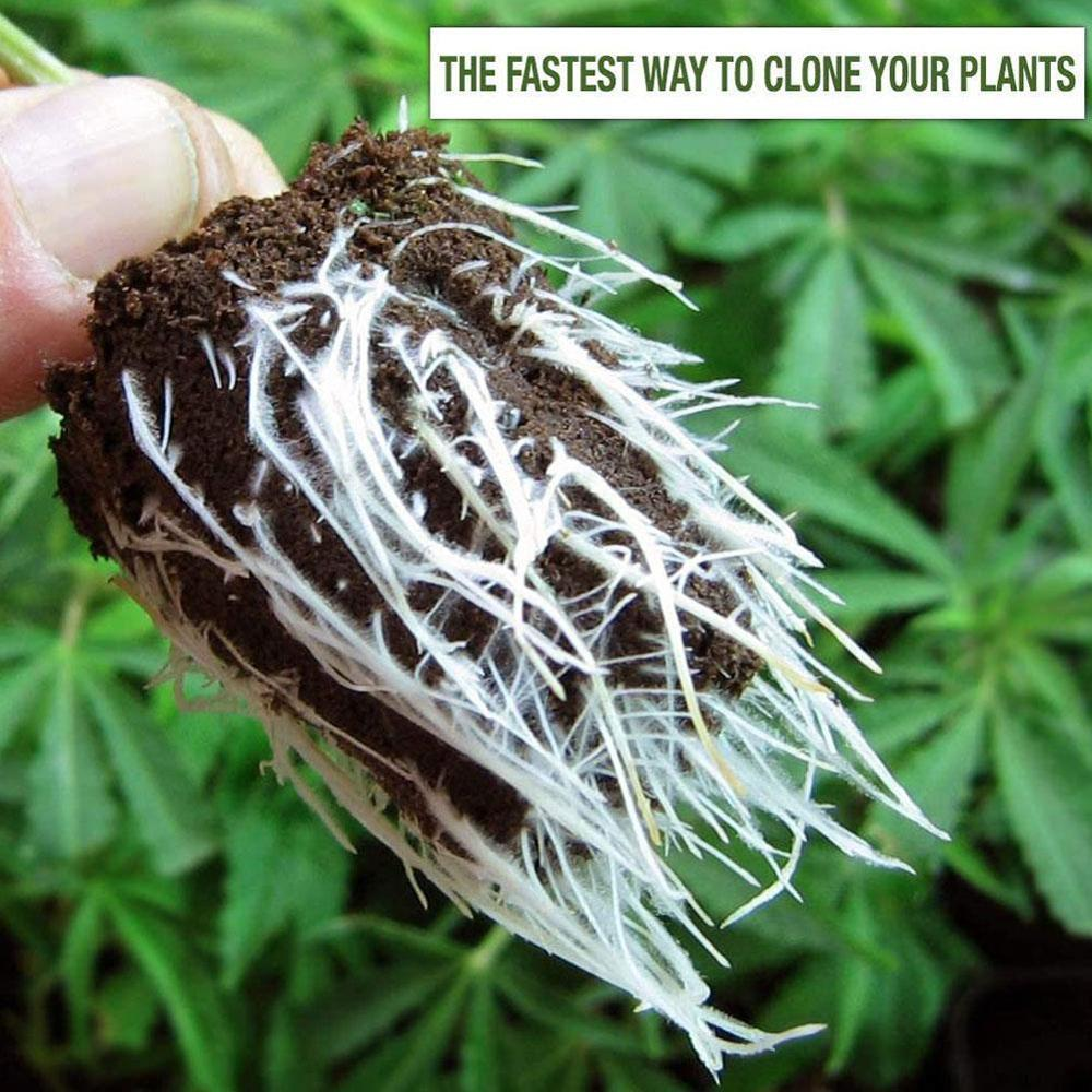 30g Garden Plants Fast Rooting Powder Strong Germination Aid Rapid Medicinal Seedling Agent For Cutting Soaking Fertilizer Trees