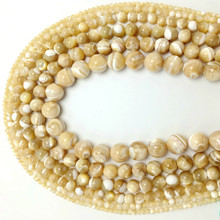 Frete grátis natural marrom trochus mar concha redonda solta beads2/3/4/5/6/7/8/9/10/12/14mm escolher o tamanho para fazer jóias