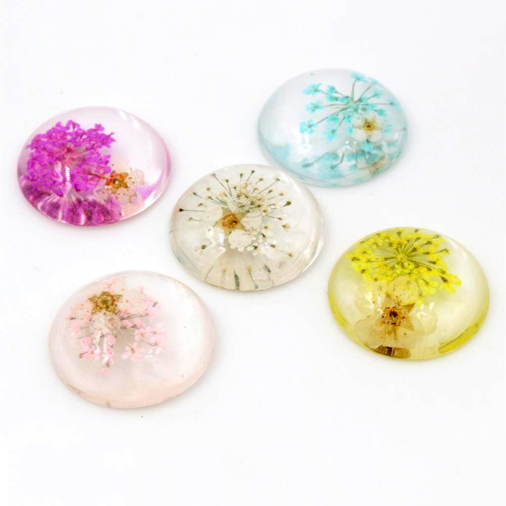New Fashion 5pcs 25mm Mix Colors Natural Dried White Chrysanthemum Flowers Cabochons Cameo