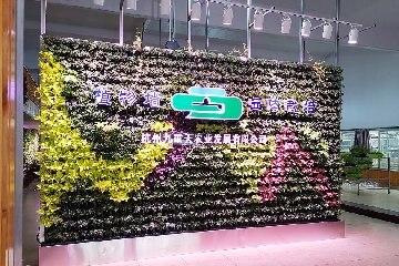 杭州九重天现代农业园绿植墙【部分移动式植物墙】