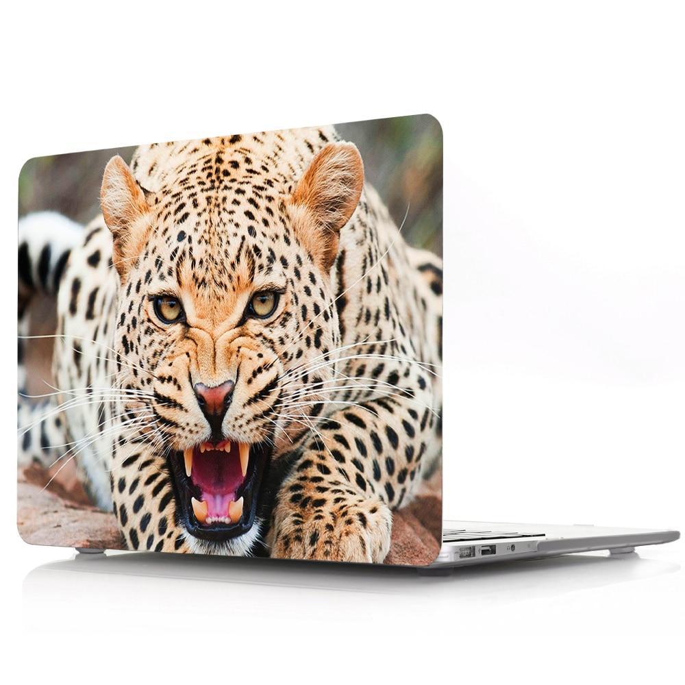 野豹 (2)