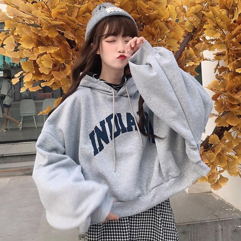 oversized Hoodies Women Thicker Letter Warm Pullover Coat Drawstring Harajuku Sweatshirt Pink Womens Korean New High Quality 9