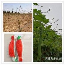 Vegetable rattan net, yam rattan net, scaffolding net, bean net, cucumber net, cantaloupe net and horticultural net рассел джонс а программирование asp net средствами vb net