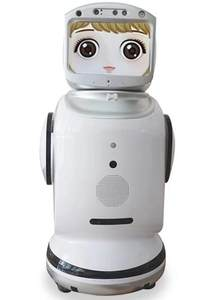 House or commercial use security alarming monitoring smart camera Robot