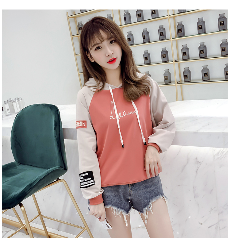 Hooded pullover girls autumn clothes Korean version of loose casual 2019 new student letter print women's sweatshirt 38