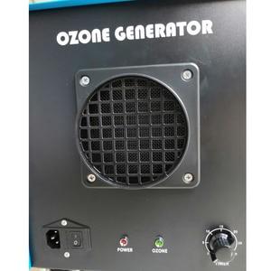 Image 5 - 산업 사용 오존 기계 공기 처리에 대 한 18g 24g 습도 최대 80% 최고 품질 세라믹 플레이트 8 년 수명