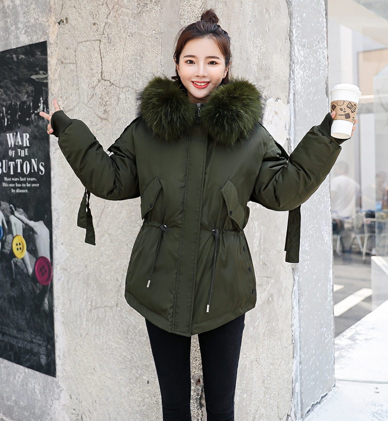 Korean Style 2019 Winter Jacket Women Cotton Padded Hooded With Fur Fe_A5_6