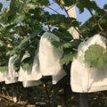 100 шт многоразовый тканевый защитный мешок для Фруктов Многоразовые нейлоновые сетчатые барьерные сумки для яблока винограда манго груши ф...