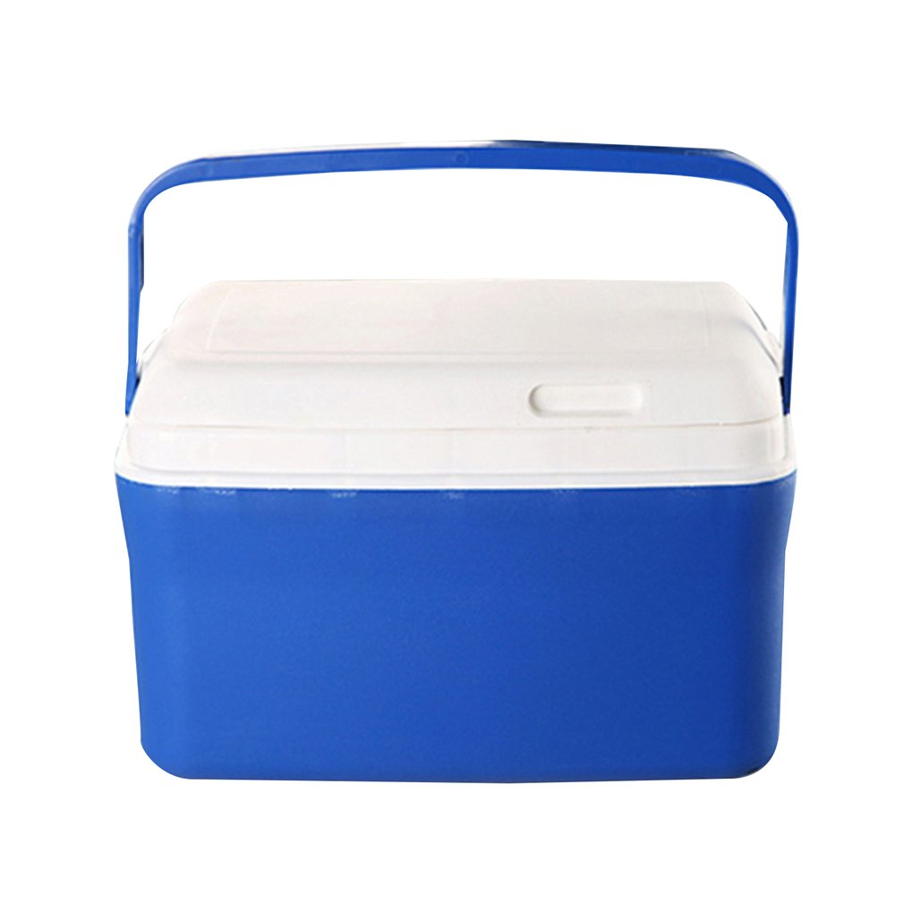 8L/13L Mini Dual Use Car Refrigerator Home Freezer Thermal Heat Preservation Cold Icebox Travel Camping Cooler Box