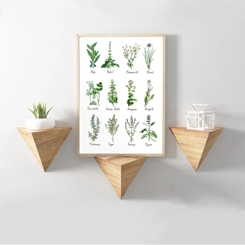 Art Decoration Botanical Chart Wall Art Poster Prints Herbs and Spices Painting Picture Herbarium Evidence Kraft paper poster image