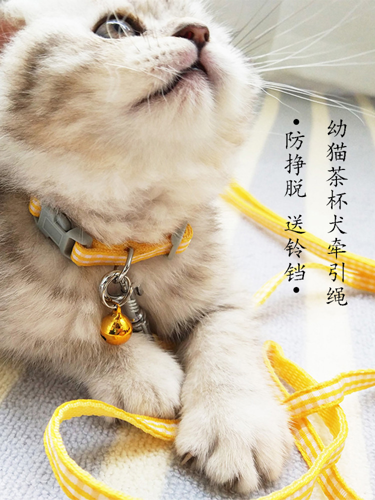 Cat Suspender Strap Lanyard Kittens Canine Thoracic Traction Collar Suppository Cat Lanyard Anti-Break Free Cat Dog Chain Walk A