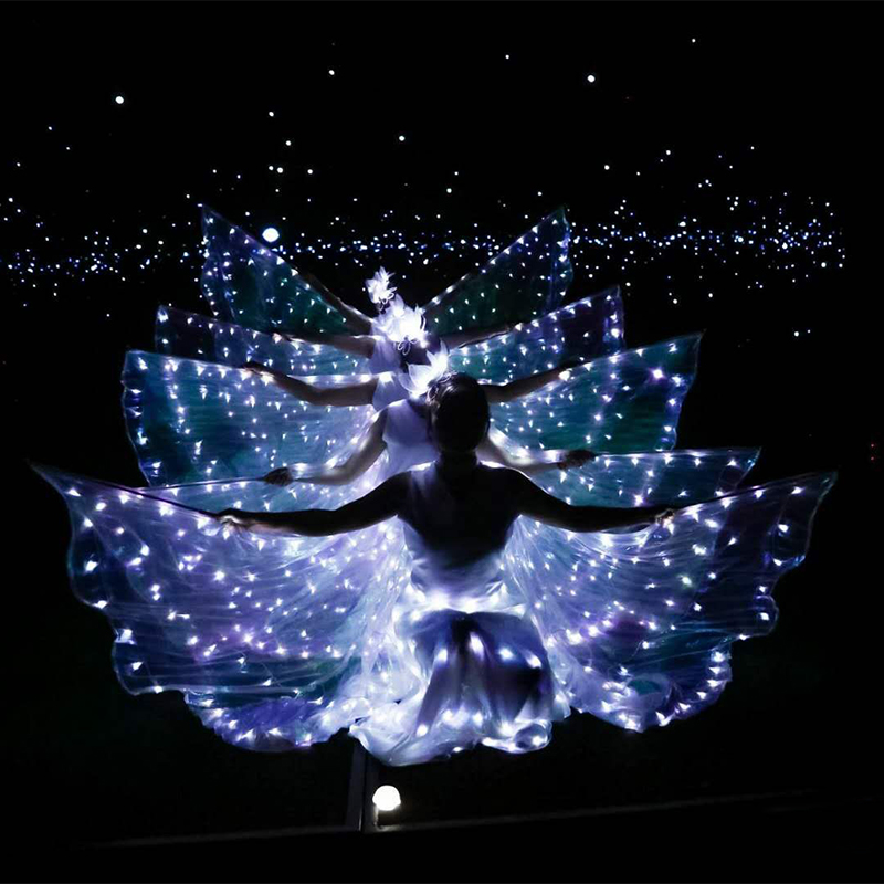LED Light Wings Ballet Performance Clothing Fluorescent Butterfly Dance Cloak Dance Costume Belly Dance Cloak Props