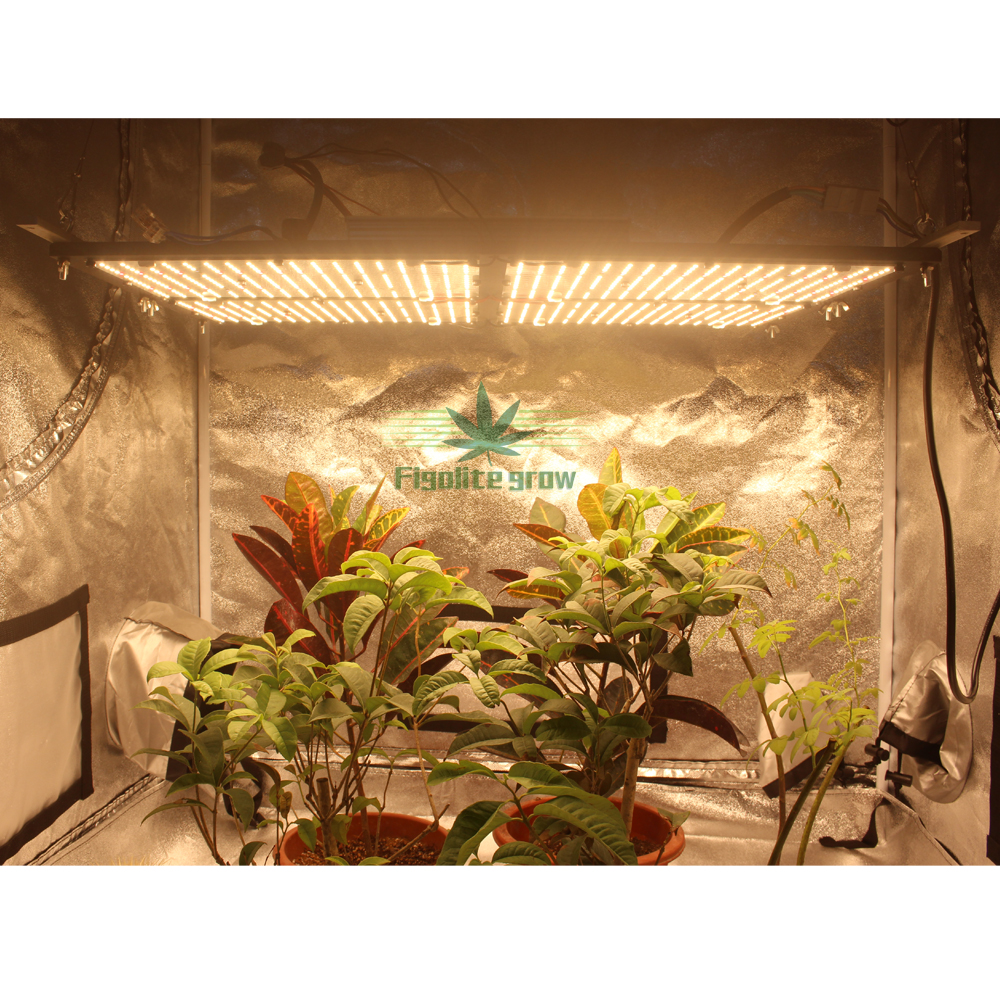 Super Bright 120W 240W 320W 480W Samsung LM301H Dimmable V3 Quantum Board UV IR Led Grow Light Meanwell Driver 7 Years Warranty