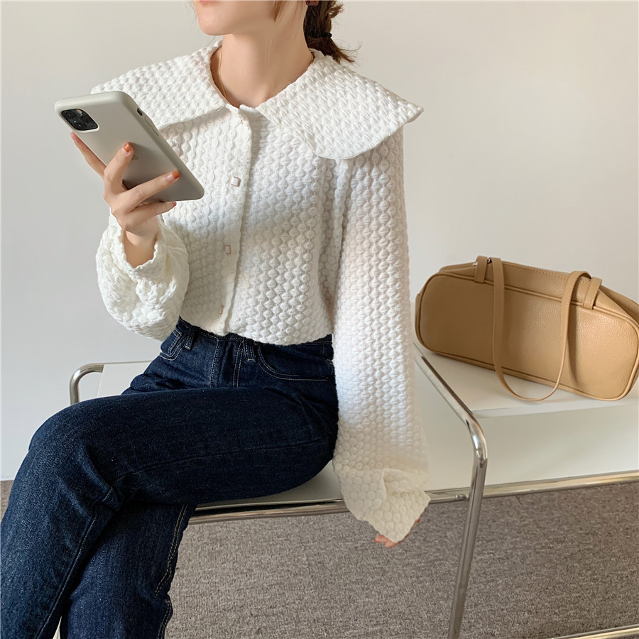 H56b720011d594fe9ac6f31f182d662281 - Spring / Autumn Big Lapel Long Sleeves French Lace Buttons Blouse