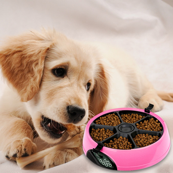 Digital Timer Pet Automatic Feeder Large Capacity 6 Meal Trays Round Anti Slip Dispenser Programmed Dry Wet Food