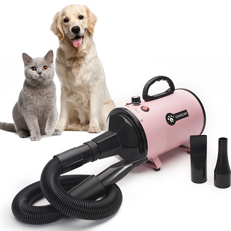 Pet Water Blower High Power Mute Large Dog Cat Special Dry Blowing Hair Artifact Hot/Cold air 220V Dog Cat Supplies - 3