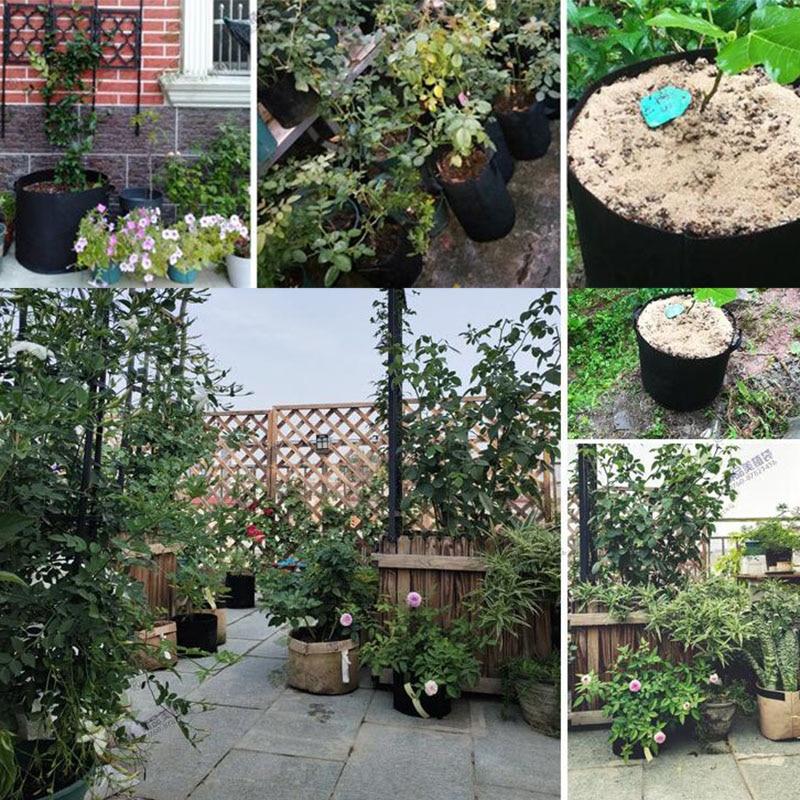 1 Gallon-30 Gallon Plant Grow Bags Home Garden Plant Growing Seedling Fabric Pot Grow Fruit Seeds Plants Thicken Gardening Tools Pakistan