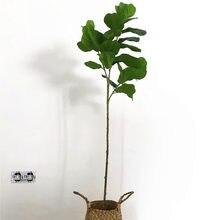 Rama de árbol Banyan Artificial de 122CM y 70CM, palmera de plástico en maceta, plantas tropicales principales, decoración para sala de estar de Hotel