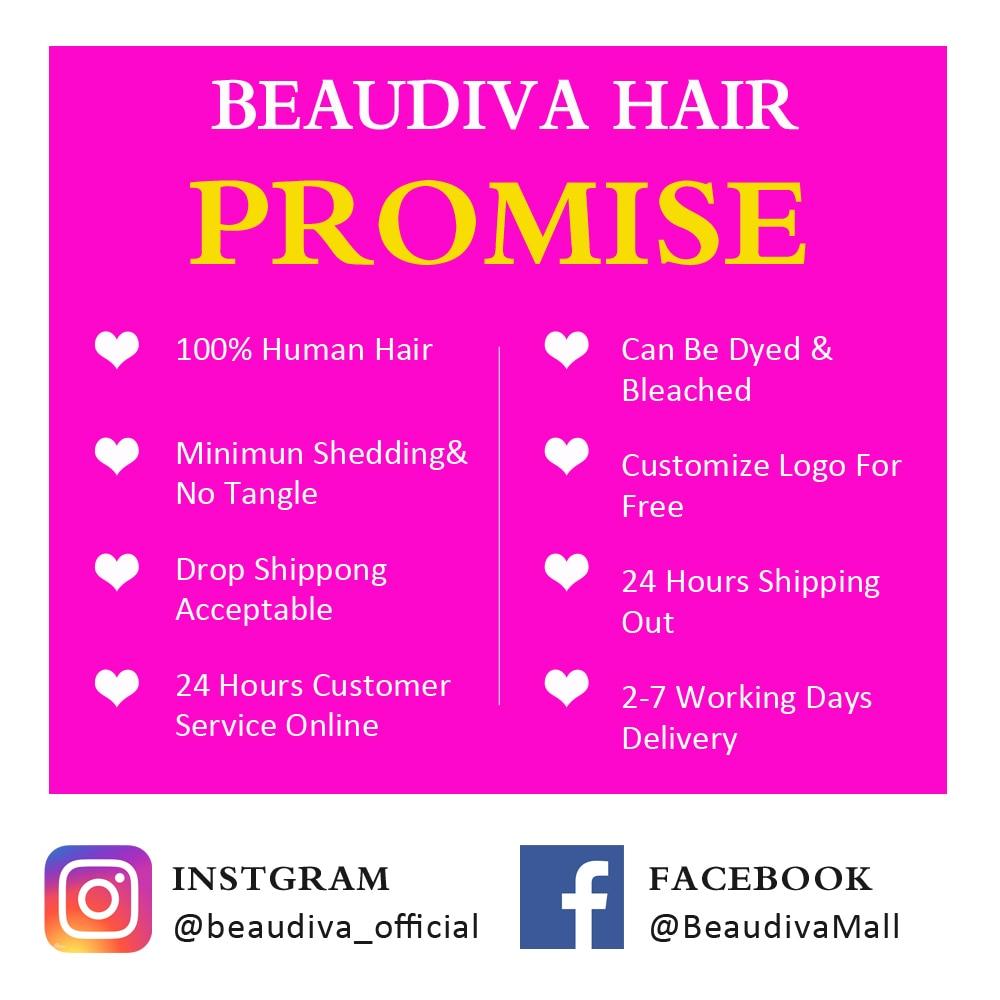 Beaudiva Hair 4x4 Closure Wig  Body Wave Wig 150 Density PrePlucked Body Wave Lace Closure  Wigs Lace Wig 6