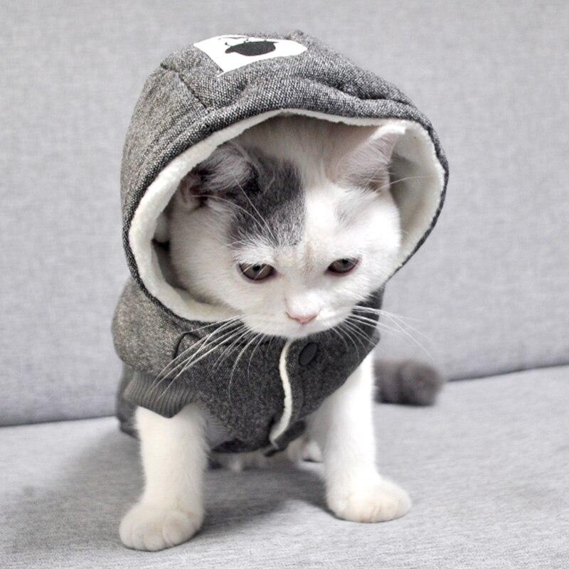 Zimowe bawełniane ubranka dla kotów dla małych kotów ciepły kostium kota Katten Kedi płaszcz kurtka Puppy odzież dla zwierząt strój dla kota