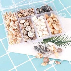 About 100Pcs/Box Natural Conch Shells Mini Conch Corn Screw Wall Decoration DIY Aquarium Landscape Seashells Crafts/party Decor