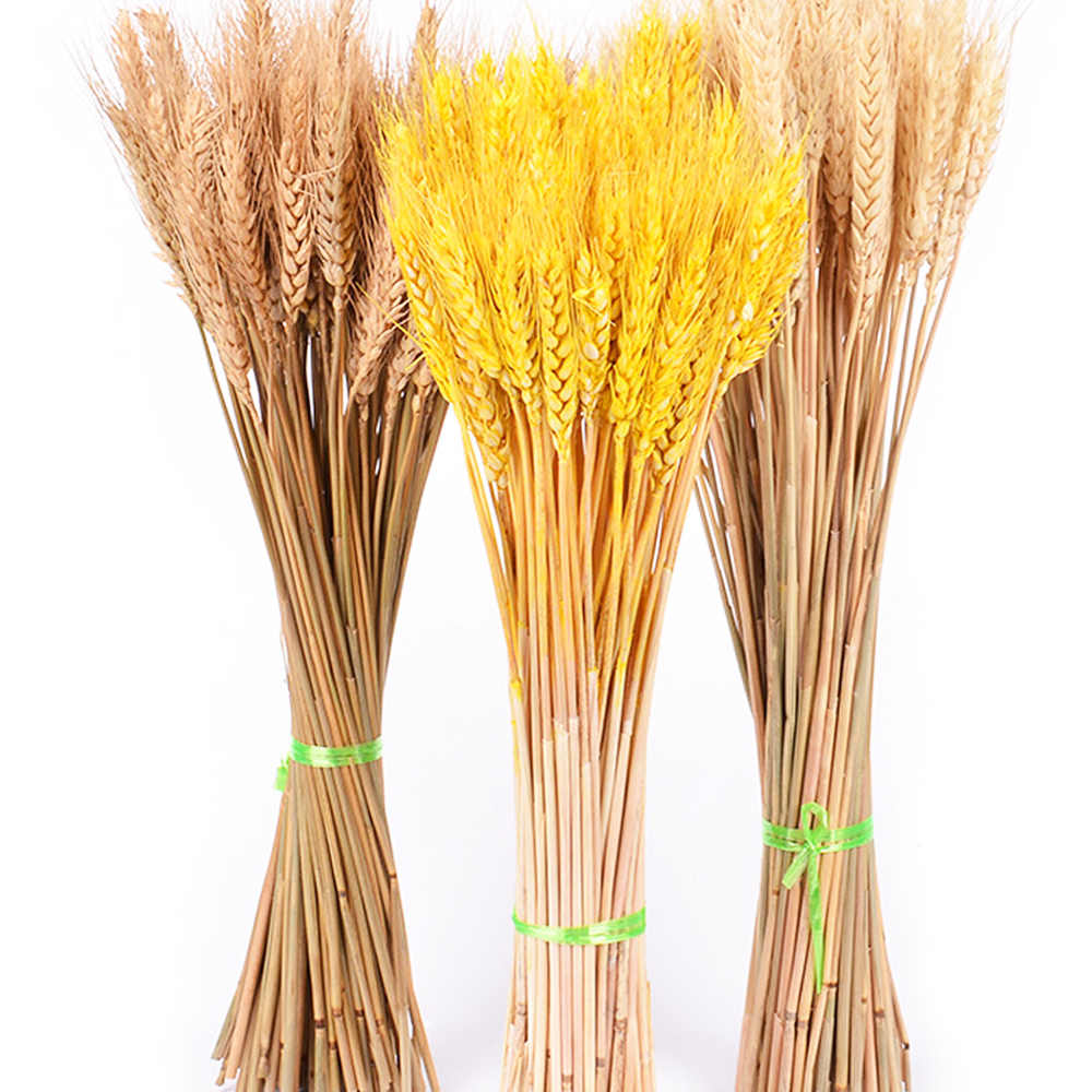 Traumdeutung 50Pcs/lot Artificial Flowers High Quality Wheat Autumn Decoration Pampas Grass Craft flowers kunstplanten