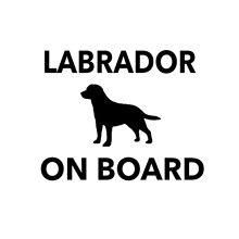 Autocollant de voiture Labrador à bord, autocollant de pare-chocs de voiture, décalcomanie en vinyle, Jdm 4x4, chien drôle, décor de voiture