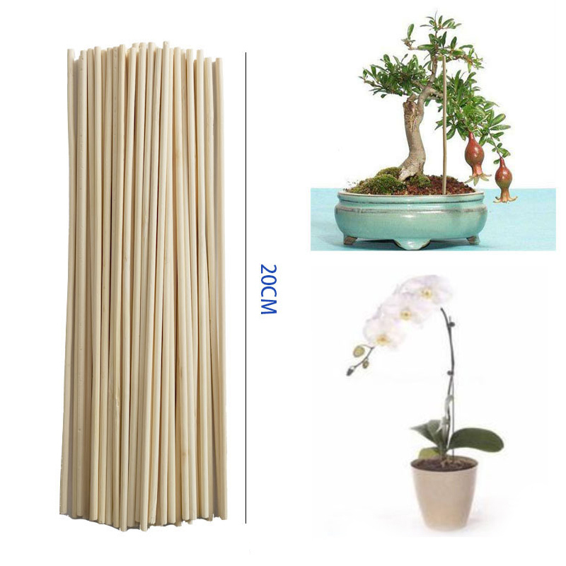 50pcs Bamboo Stick Plant Growth Support Rod Small Bonsai Branch Vine Garden Supplies