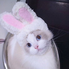 Hat Headwear Pet-Accessories Photo-Props Puppy Cat Dogs Funny Rabbit for Small Flamingo