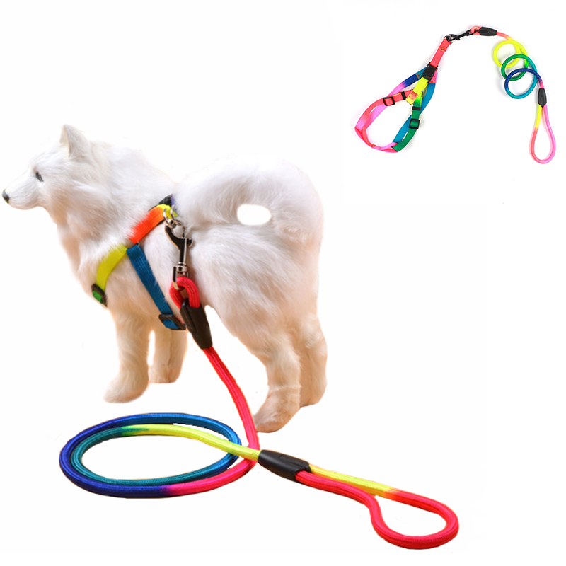 Soft Pet Dog Collar Colorful Rainbow Harness Leash Walking Harness Lead Colorful and Durable Traction Rope Nylon Pet Dog Supplie