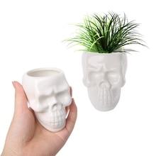 Creative Skull Ceramic Flower Pot Green Succulent Planter Plant Container Decor  C63B