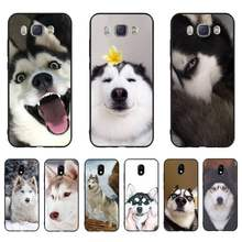 HTXian Cute Husky Custom Photo Soft Phone Case For Samsung J7 J8 J6 J4Plus J5 J7Prime J2 J5Prime M10 M20 M30(China)