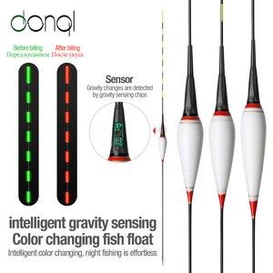 DONQL Nano Smart Led Fishing Float Gravity Sensor Fish Bite Remind Buoy Glowing Electric Night Fishing Float With Batteries(China)